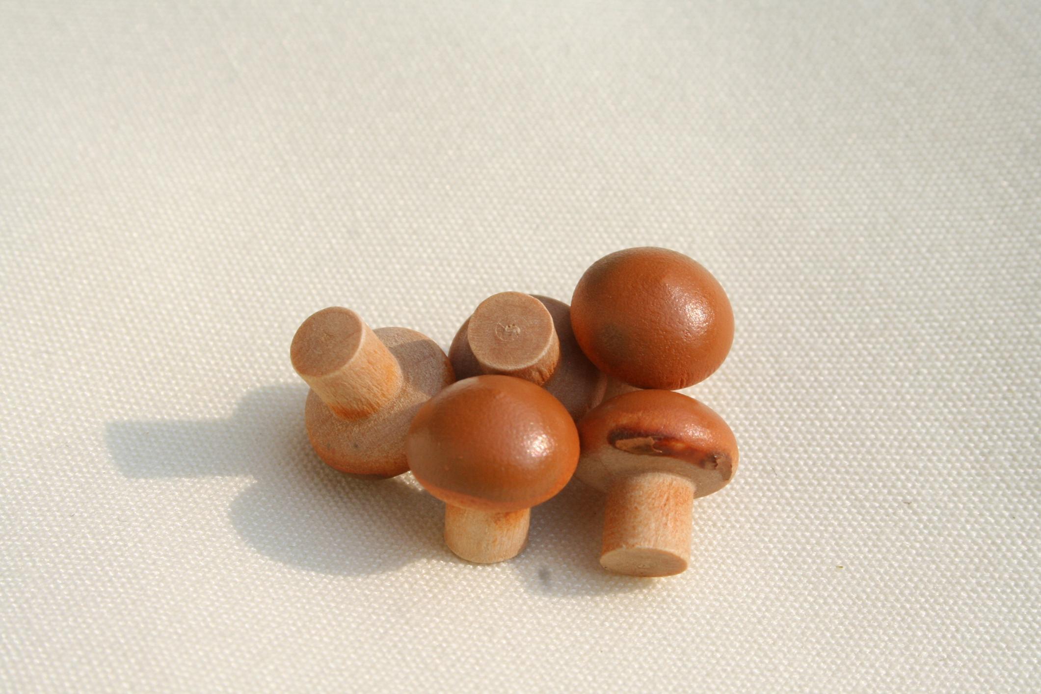 wurzelkrippe krippenhobby onlineshop k 199 pilze miniaturpilze aus holz t te mit 5 st ck. Black Bedroom Furniture Sets. Home Design Ideas